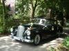 Ein Oldtimer als Hochzeitsauto - Der Mercedes Adenauer